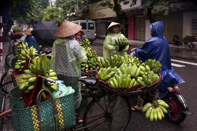 hanojský trh